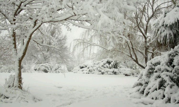 Snow in Molteno, South Africa