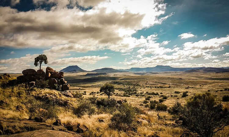 Karoo Ridge Conservancy